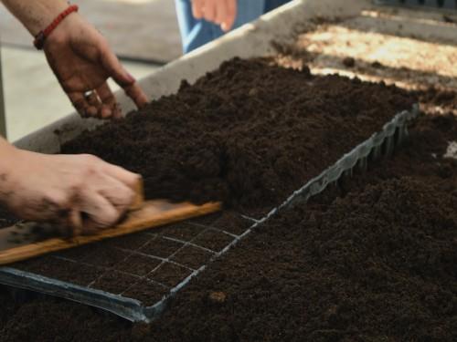 Karakteristike kvalitetnih supstrata za setvu i rasađivanje