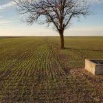 Preporuke za jesen – Ekoplant, prirodno iz Rusije