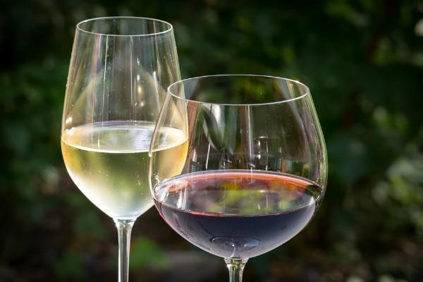 Na Beogradskom salonu vina predstaviće se 100 vinarija