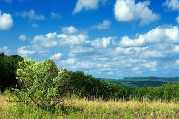 """Peticija za novi model upravljanja u Parku prirode """"Stara planina"""""""