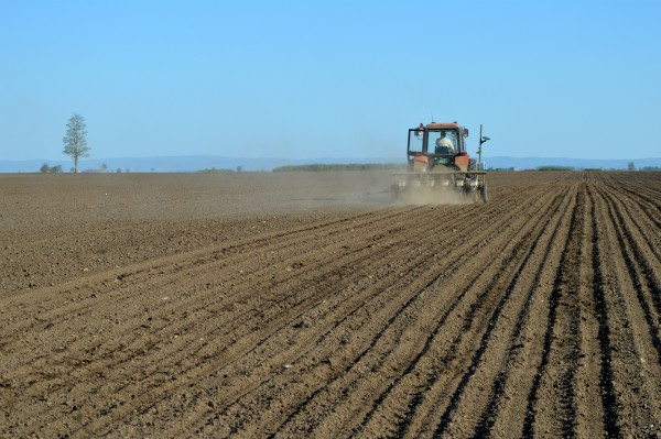 Podsticaji po hektaru biće automatski isplaćeni, bez podnošenja zahteva