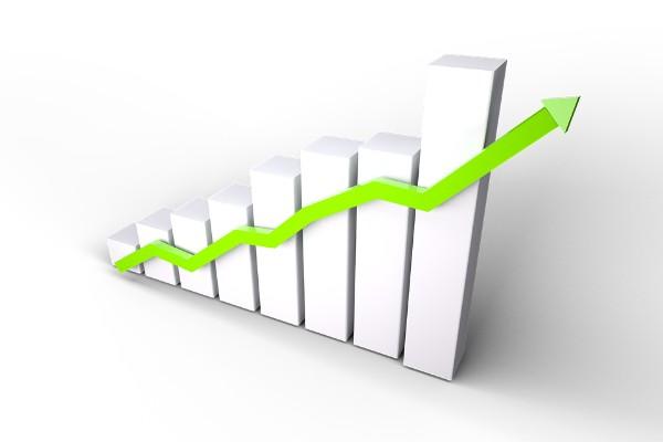 Porasle cene: Kukuruz 18,80 pšenica 21, a soja do 52 dinara