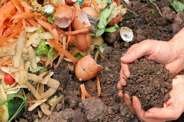 Read more about the article Kompost – Nekoliko saveta za proizvodnju dragocenog đubriva